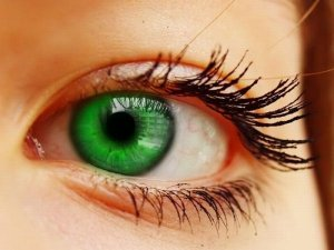 Особенности распознания радужной оболочки глаза человека