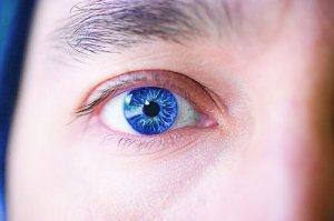 Как формируется изображение в человеческом глазе